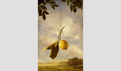 12602a577 From Lemons to Lingerie by Linda Ingraham   Tom Eckert - Art Exhibit ...